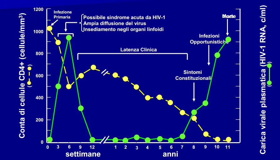 Hiv diagnosi sierologica e monitoraggio terapeutico - Periodo finestra test hiv ...