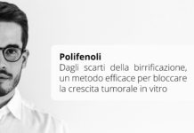 Scarti della birrificazione usati per bloccare la crescita tumorale in vitro - Author Domenico Posa
