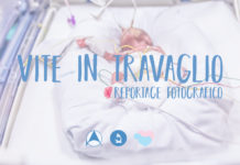 """""""Vite in Travaglio"""" Reportage Fotografico - Author: Antonella Posa"""