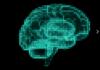Un nuovo studio del MIT punta a scoprire i pathways neuronali presenti tra le varie aree del nostro cervello paragonandoli ad un videogame.