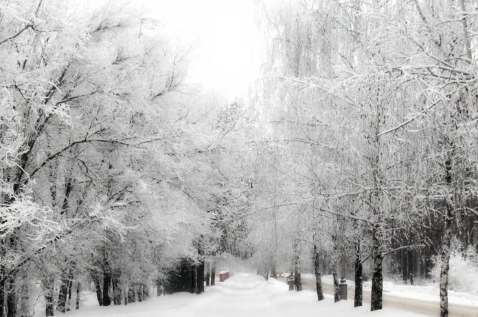 neve caso clinico