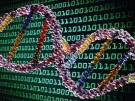 Presto il DNA potrebbe diventare un hard-disk!