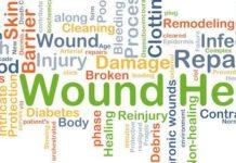 La memoria della pelle e la rigenerazione tissutale