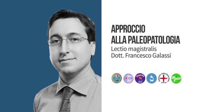 Francesco Galassi Head