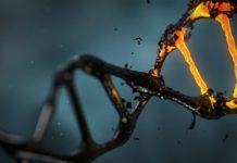 Editing genetico